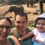 Photo de Chester Zoo