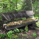 Find this lovely bench on the trails!