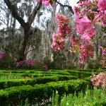The formal English Garden at Magnolia Gardens
