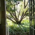 The Secret Garden Inn Foto