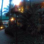 Foto de Vanderbilt Beach Resort