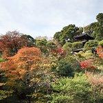Photo of Hotel Chinzanso Tokyo Garden