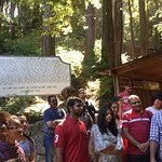 At mystery spot
