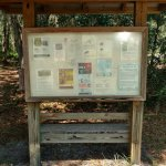 Nature Trail entrance(Marker 21 or 22 on the Trail Map)