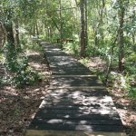 The Nature Trail is mostly grass and sand, but has a very pretty wooden walkway near the beginni