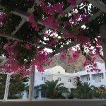 Photo de Afroditi Venus Beach Hotel & Spa