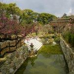 Photo of Kitano Tenmangu Shrine