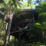 Deluxe treehouse, snorkelling in the billabong and fig tree rapids