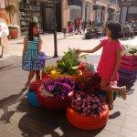 Photo of Zenia Boulevard