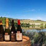 Rhebokskloof wines