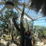 Photo of Palmengarten