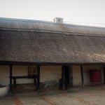 Ancestry tour in Batchka