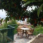 Photo of Hotel Villa Steno