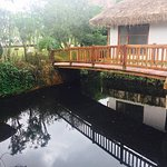 Foto de Deshadan Backwater Resort