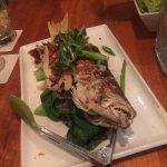 Fish d'vine Foto