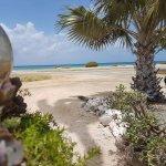Photo de Aruba Sunset Beach Studios