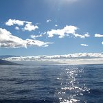 a beautiful day to be on the ocean loking at whales