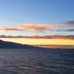 the snorkeling trip starts at dawn