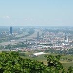 Foto di Viennatour