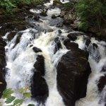 Heart of Scotland Tours Foto