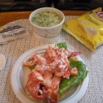 House special: cup chowder & regular lobster roll