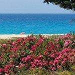 La plage vue du bungalow VIP