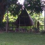 hanging hammock -beehive shape