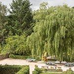 le jardin avec bientot la piscine couverte et spa