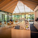 The Umami Cafe by Ajinomoto serves Japanese teas paired with sweets. Photo by Bruce Forster.