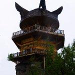 Fish watching tower