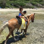 Horseback ride at Palomino island