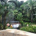 Tabacon Hot Springs Foto