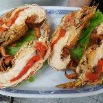 Cavaco- Slipper Lobster