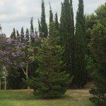 Photo de Parque De La Paloma