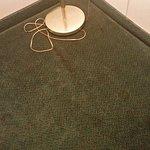 Filthy carpeting.