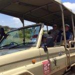 Photo de Kikoti Safari Camp