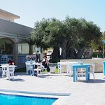Mediterranean Studios Apartments restaurant, pool and 600 years old olive tree