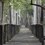 Photo of Bilit Rainforest Lodge