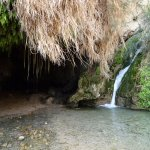 Photo of En Gedi Nature Reserve