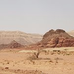 The colors of Timna Park
