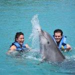 Foto de Dolphin Discovery Grand Cayman