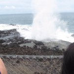 lots of ocean action