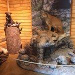 Photo de Rogers Pass Discovery Centre