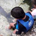 Cenote Azul - Terapy Fish Free