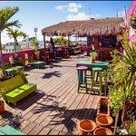Nuestra paradisiaca y fresca Terraza-Bar.