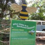 The park encourage bees to thrive