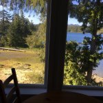 View from cabin #501- May 2017