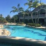 Swim-Up Lagoon Room