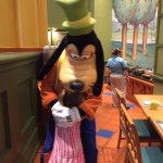 Walt Disney World Dolphin Resort Photo