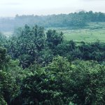Photo of Bambu Indah